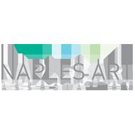 Naples Art Association logo